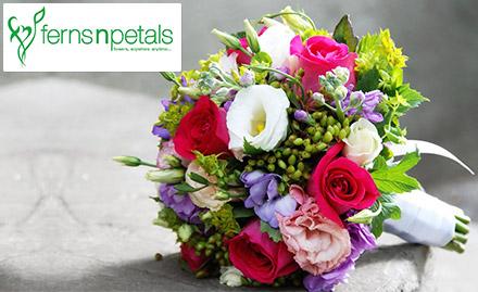 Ferns N Petals Deal, Offer